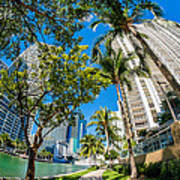 Downtown Miami Brickell Fisheye Art Print