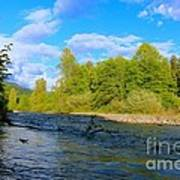 Salmon  Creek  Art Print by Tim Rice