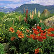Usa, Colorado, Crested Butte Art Print