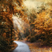 Late Autumn Trail Art Print