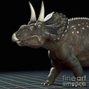 Dinosaur Diceratops Art Print