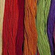 Multicolored Embroidery Thread In Rows Art Print