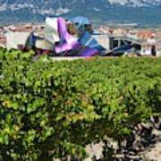 Spain, Basque Country Region, La Rioja Art Print