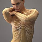 The Skeletal System Female Art Print