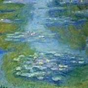 Waterlilies Art Print