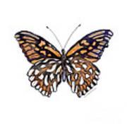 9 Mexican Silver Spot Butterfly Art Print