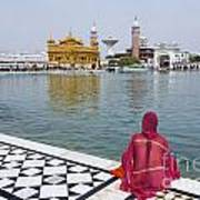 The Golden Temple At Amritsar India Art Print