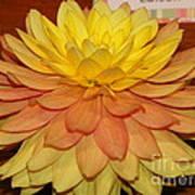 #928 D801 Dahlia Orange Yellow Pink Green Art Print