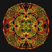 995 - Mandala In Earth Colours   Art Print