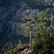 A Backpacker Hikes Down A Trail Art Print