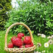 A Basket Of Strawberries Art Print