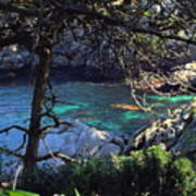 A Beautiful Cove At Point Lobos Art Print