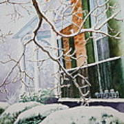 A Blanket Of Snow Art Print by Patsy Sharpe