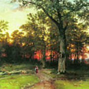 A Child Walks In A Forest Art Print