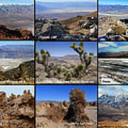 A Collection Of Views Art Print