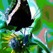 A Cosmic Butterfly Art Print