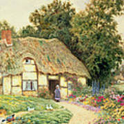 A Cottage By A Duck Pond Art Print