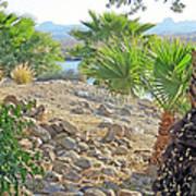 A Desert Landscape Art Print