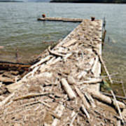 A Dock Covered With Driftwood Art Print
