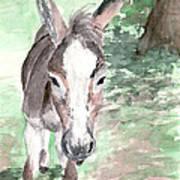 A Donkey Day Art Print