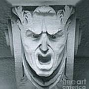 A Face In A Facade Art Print