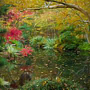 A Fall Afternoon Art Print