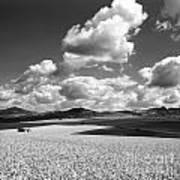 A Field Of Wheat. Limagne. Auvergne. France Art Print