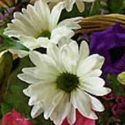 A Flower Basket Art Print