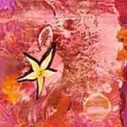 A Flying Star Flower Art Print