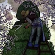 A Gardener Pruning A Tree Art Print