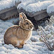 A Good Place - Bunny Art Print