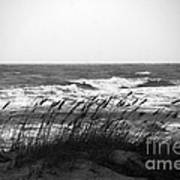 A Gray November Day At The Beach Art Print by Susanne Van Hulst