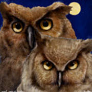 A Great Pair Of Hooters... Art Print