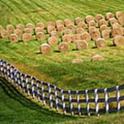 A Herd Of Hay Bales Art Print