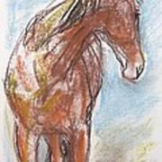 A Horse Looks Back Art Print