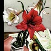 A House And Garden Cover Of Lilies Art Print
