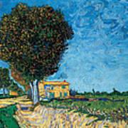 A Lane Near Arles Art Print