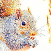 A Little Bit Squirrely Art Print