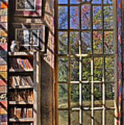 A Look From The Library Art Print by Susan Candelario