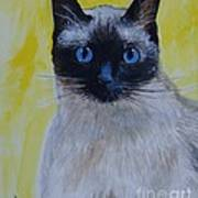 A Loving Siamese Art Print by Leslie Allen