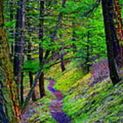 A Magical Path To Enlightenment Art Print