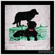 A Newfoundland Dog And A Labrador Retriever Art Print