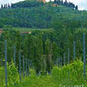 A Painting A Tuscan Vineyard And Villa Art Print