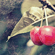 A Pair Of Cherries Art Print