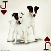 A Pair Of Jacks... Art Print by Will Bullas