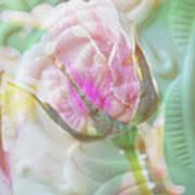 A Porcelain Rose Art Print