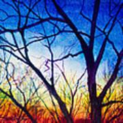 A Primary Sunset Art Print