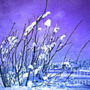 A Purple Winter Art Print