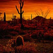 A Red Desert  Art Print