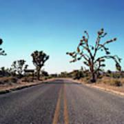 A Road Leads Through Joshua National Art Print